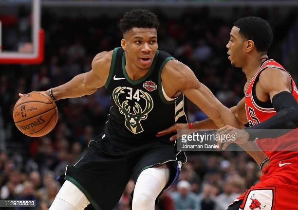Giannis Antetokounmpo of the Milwaukee Bucks moves against Shaquille Harrison of the Chicago Bulls at the United Center on February 11 2019 in...