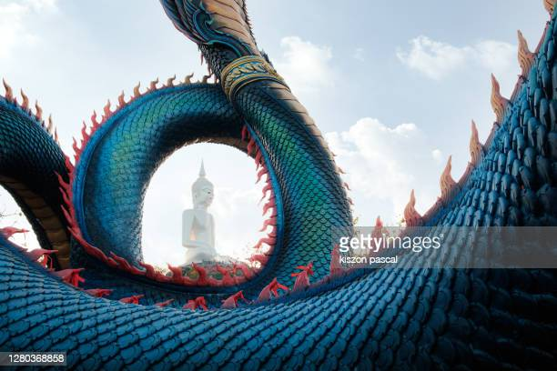 giant buddha statue in wat roi phra phutthabat phu manorom in mukdahan in thailand . - local landmark stock pictures, royalty-free photos & images