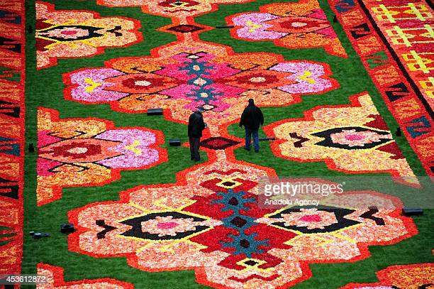 A giant carpet is made with 600000 begonia flowers within the celebrations of the 50th anniversary of Turkish workers' migration to Belgium at Grand...