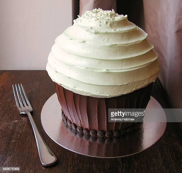 Giant Chocolate Cupcake!!