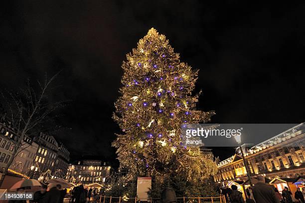 Giant Christmas tree, Strasbourg, France
