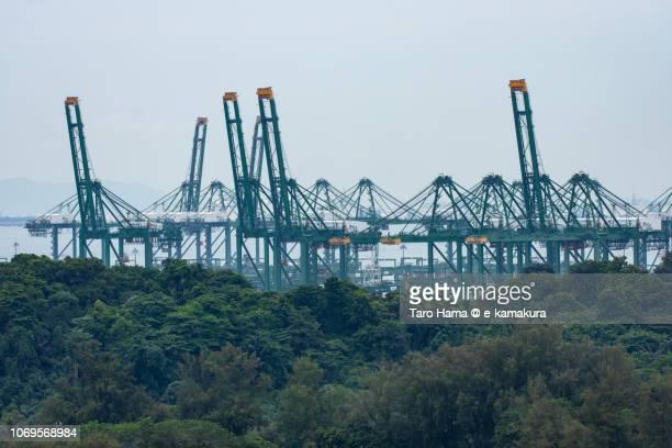 Giant cranes in Harbor of Singapore