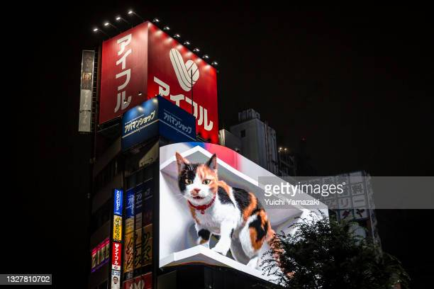 Giant digital screen shows a 3D cat in Shinjuku area on July 09, 2021 in Tokyo, Japan. A 4K display in Tokyo's Shinjuku district has become home to a...