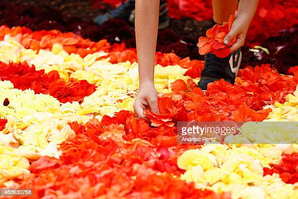 Giant flower carpet is pictured within the celebrations of the 50th anniversary of Turkish workers' migration to Belgium at the Grand Place next to...