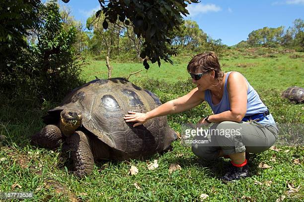 Giant Galapagos tortoise with tourist