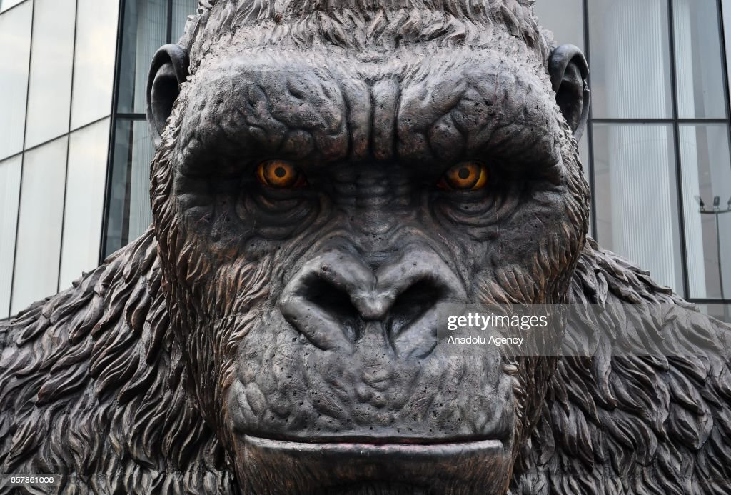 A giant gorilla model, a character from 'Kong' is being displayed during the Kong: Skull Island movie display at TaiKoo Hui Mall in Guangzhou, China on March 26, 2017