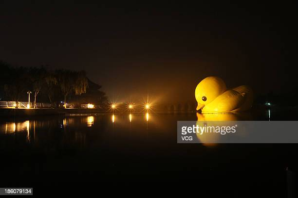 Inflatable Duck Stock Photos and Pictures | Getty Images