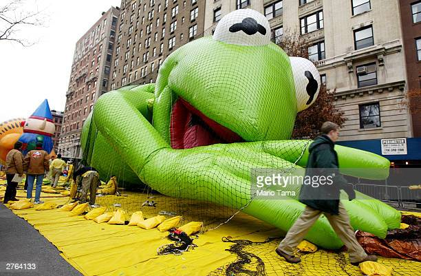 A giant Kermit the Frog balloon is inflated with helium in preparation for the 77th annual Macy's Thanksgiving Day Parade November 26 2003 in New...