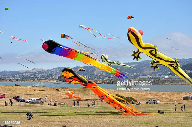 Giant kites over Berkeley