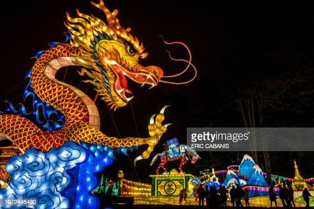 A giant lantern depicting a dragon is installed at the Foucaud Park in Gaillac southwestern France during the Lantern Festival on December 12 2018...