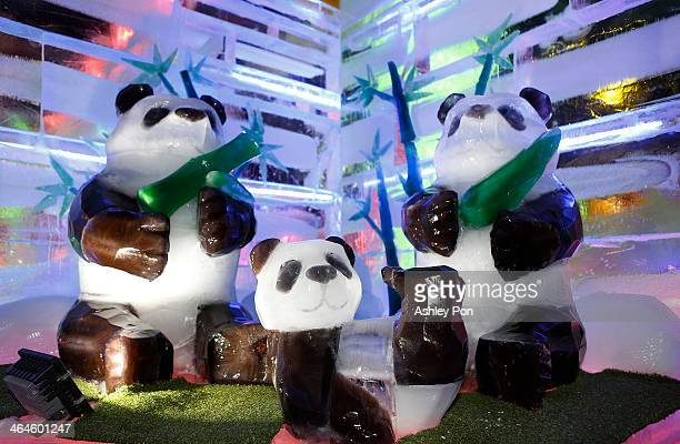 """Giant pandas ice sculpture displayed at """"Fantasy Ice World"""" on January 23, 2014 in Taipei, Taiwan. Ice sculptors from the famous Harbin Ice Festival..."""
