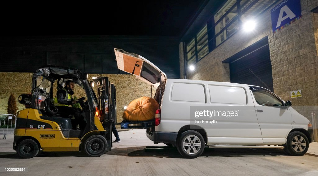 A giant pumpkin owned by Laura Litchfield and Chris Marriot from Mansfield is removed from the back of their van by fork lift as they prepare for the giant vegetable competition on the first day of the Harrogate Autumn Flower Show held at the Great Yorkshire Showground on September 14, 2018 in Harrogate, England. Gardeners and horticulturalists from across Britain descend on the Yorkshire Showground every Autumn to show off their prized crops of vegetables, flowers and plants in the hope of a coveted award from the judges. The show which is organised by the North of England Horticultural Society is open to the public from 14-16 September.