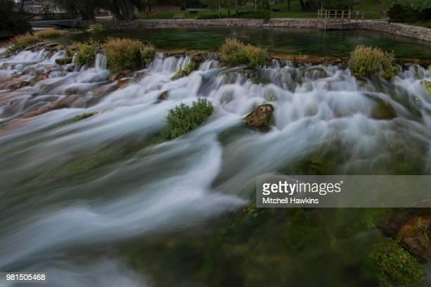 giant springs - brook mitchell bildbanksfoton och bilder