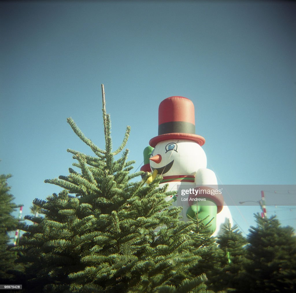 Giant Stay Puffed Forest Dwelling Snowman : Stock Photo