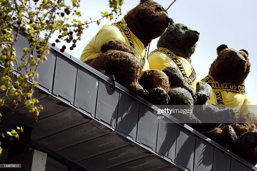 Giant teddy bears wearing scarves of the : News Photo