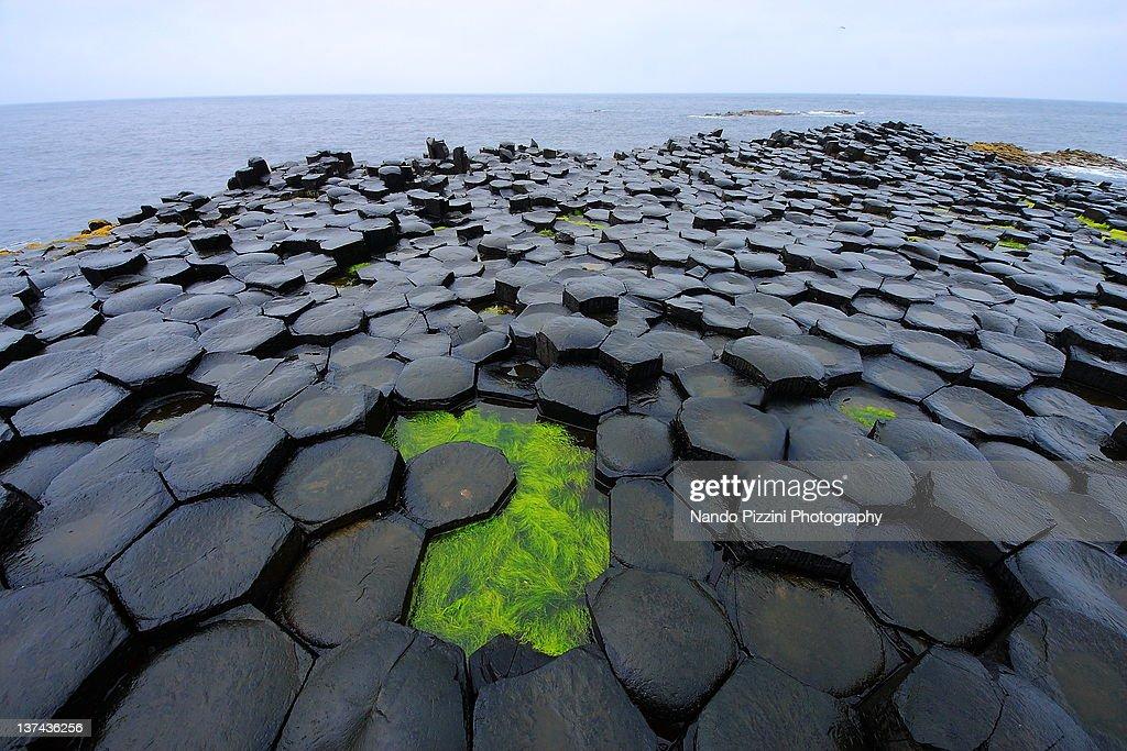 Die Erde, in der wir leben und der Raum, der die Welt ist - Seite 49 Giants-causeway-picture-id137436256