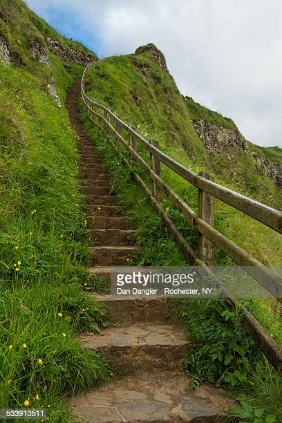 Giant's Causeway Steps