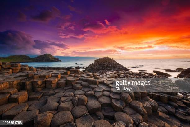 giant's causeway sunset northern ireland uk - low tide stock pictures, royalty-free photos & images
