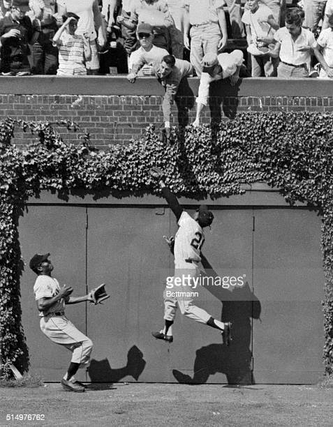 Giant's center fielder Willie Mays snags a long fly on wall hit by Cub's Bobby Thompson in the 6th inning of the first game of the Cubs-Giants...