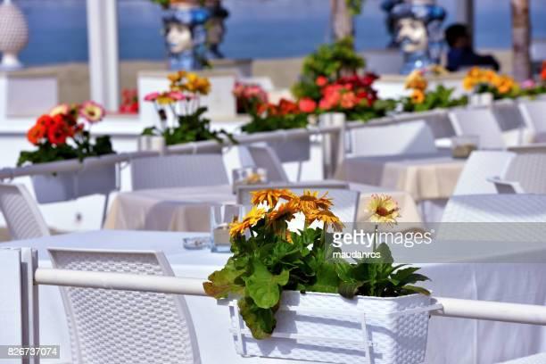 giardini naxos taormina sicily - naxos sicily stock pictures, royalty-free photos & images