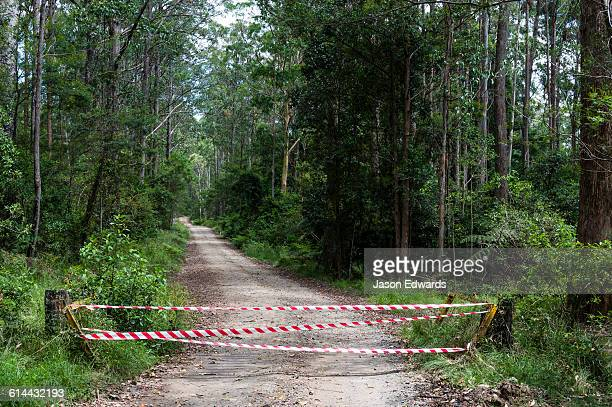 Emergency services tape across a forest track during bushfires.