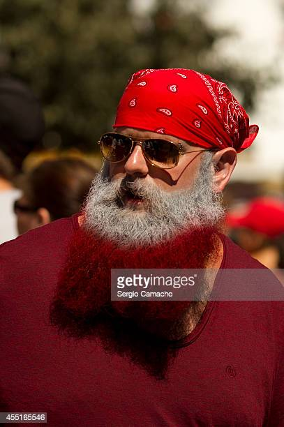 Gibraltarian with the beard with the colors of the Gibraltar flag is seen during during Gibraltar National Day celebrations on September 10 2014 in...