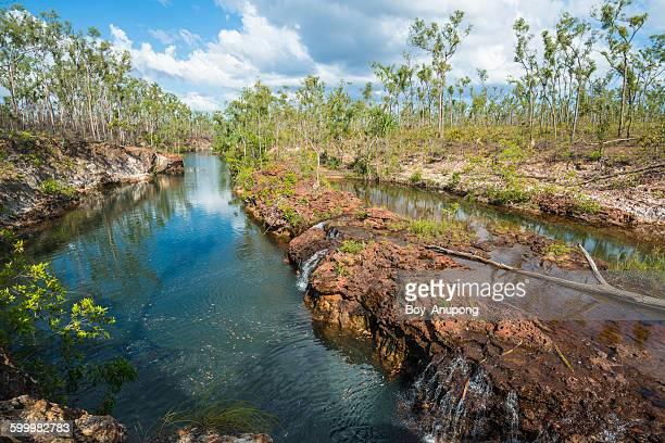 giddy river, gove peninsula, australia - territorio del norte fotografías e imágenes de stock