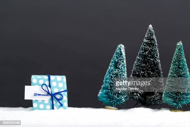 Gift box with miniature Christmas trees