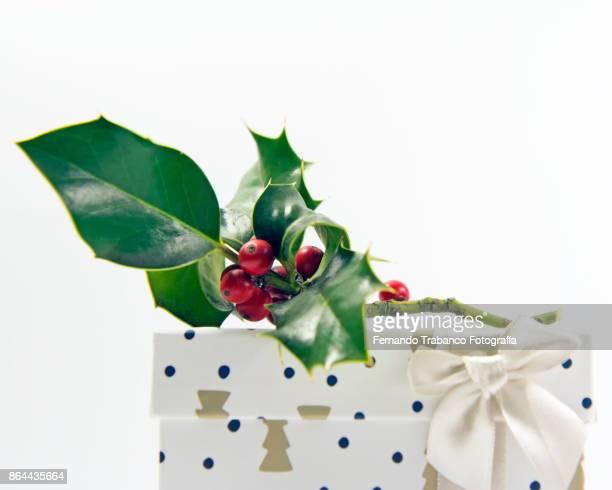 gift box with vegetable decorations - reyes magos regalos fotografías e imágenes de stock
