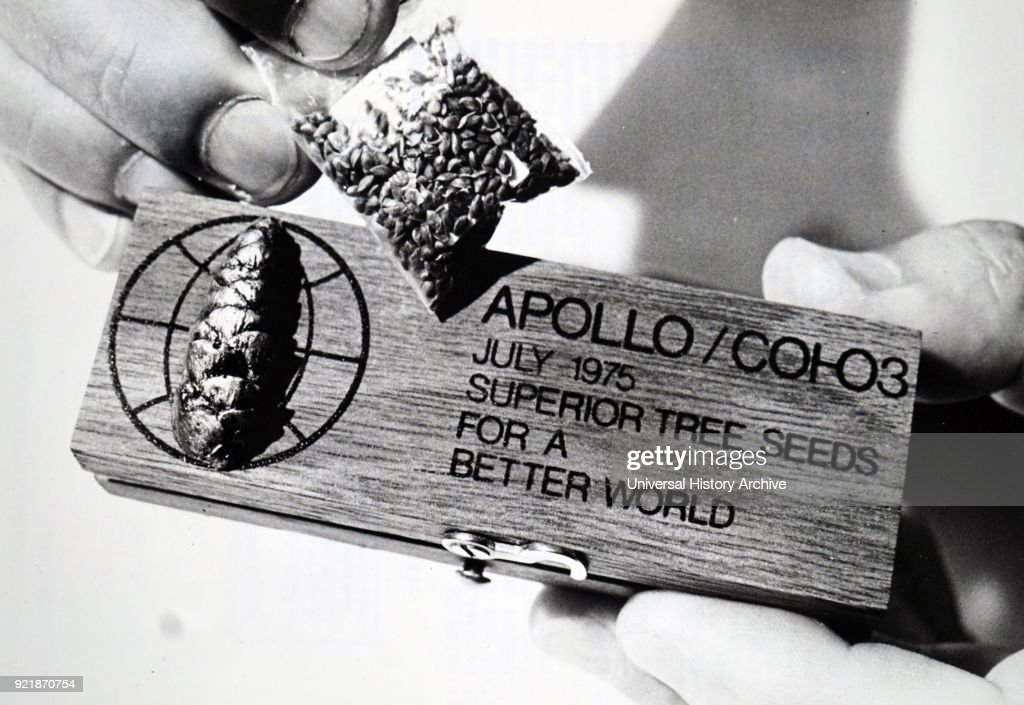 Gift of superior tree seeds given to the crew of the Apollo Soyuz Test Project. : News Photo