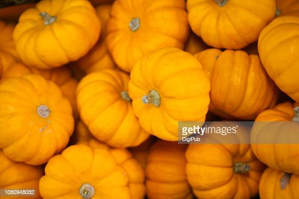 gift pumpkins piled for sale in tokyo in october, produced in usa - pumpkin stock pictures, royalty-free photos & images