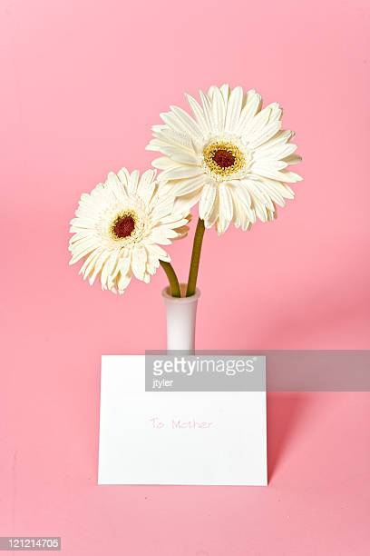 gifts for mother's day - mothers day card stock pictures, royalty-free photos & images