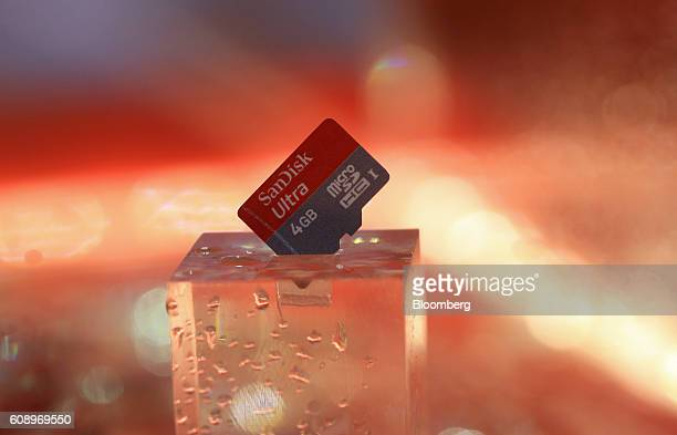 A 4 gigabyte SanDisk Micro SD card manufactured by SanDisk Corp sits on display during the Photokina photography trade fair in Cologne Germany on...