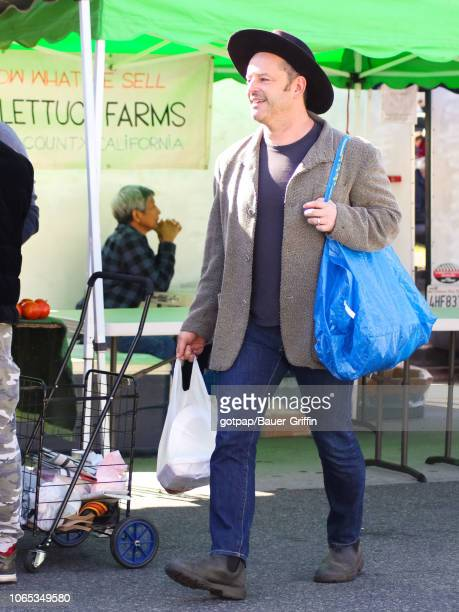 Gil Bellows is seen on November 25 2018 in Los Angeles California