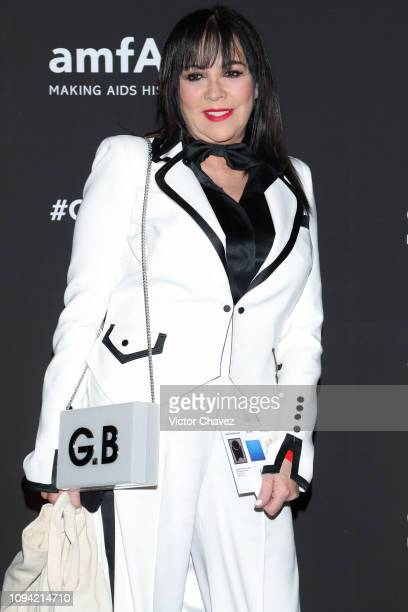 Gilda Baumlapte poses during the amfAR gala dinner at the house of collector and museum patron Eugenio López on February 5 2019 in Mexico City Mexico