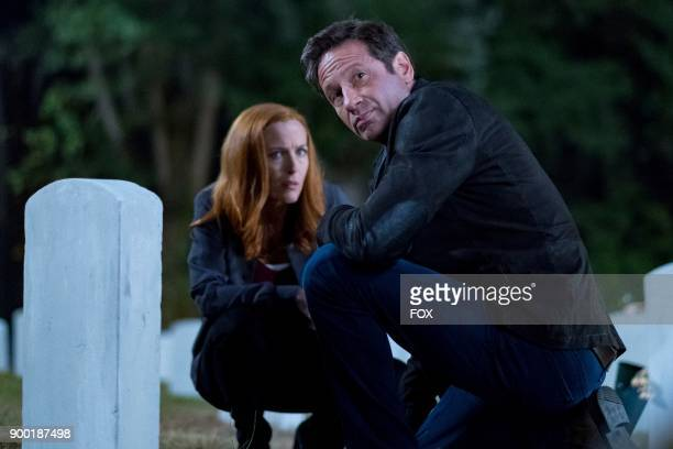 Gillian Anderson and David Duchovny in the This episode of THE XFILES airing Wednesday Jan 10 on FOX