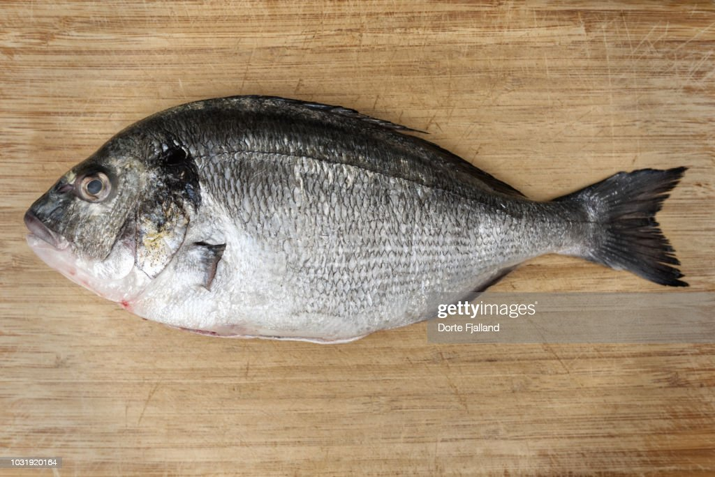 Gilt-head bream cleaned, but not scaled on a bamboo board : Foto de stock