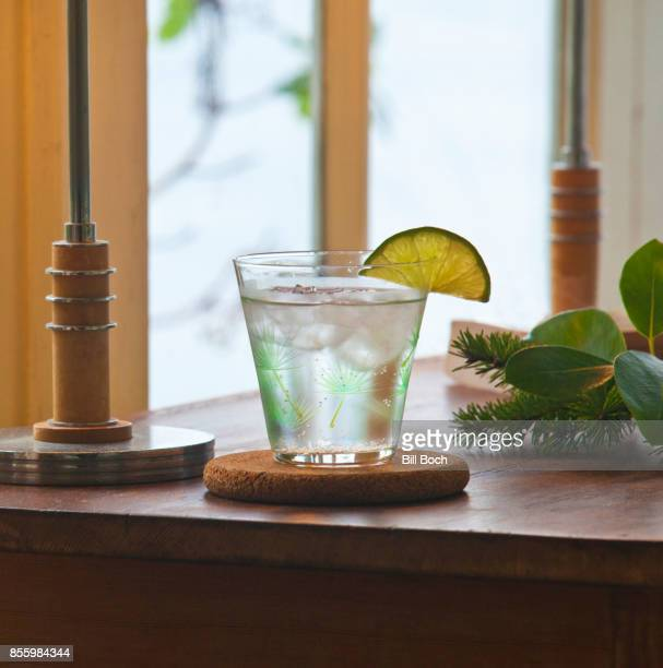 Gin and tonic cocktail in a evergreen glass with a lime slice garnish by a window