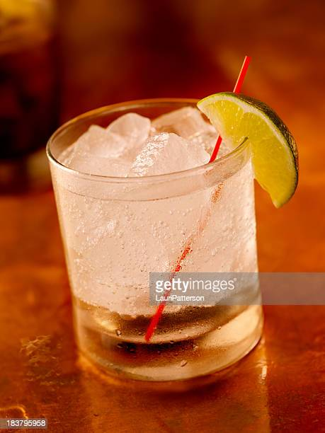 Gin and Tonic on the Rocks