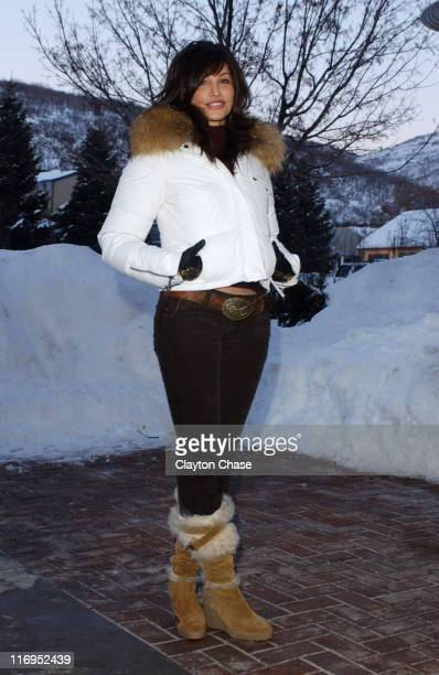 Gina Gershon during 2006 Sundance Film Festival Dreamland Premiere at Library in Park City Utah United States
