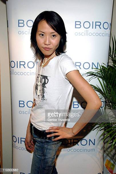 "Gina Kim, Director of ""Never Forever"" at Boiron during 2007 Park City - Luxury Lounge - Day 4 at Media Placement Luxury Lounge in Utah, United States."