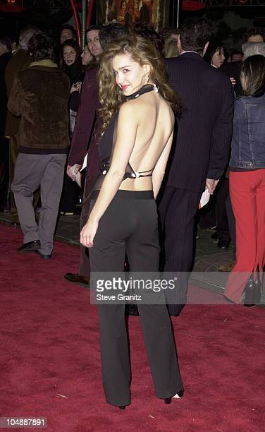 Gina Philips during The Family Man Los Angeles Premiere at Mann Chinese Theatre in Hollywood California United States