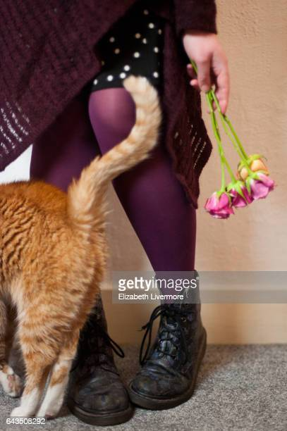 Ginger cat rubbing against woman's legs