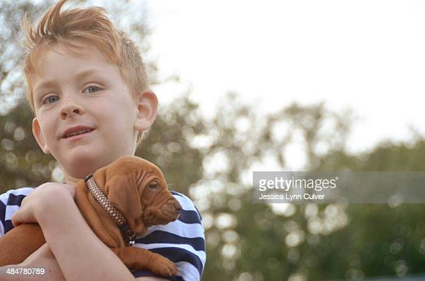 ginger hair boy holding ginger hair puppy - ginger lynn stock photos and pictures
