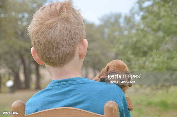 ginger haired boy holding a vizsla puppy - ginger lynn stock-fotos und bilder
