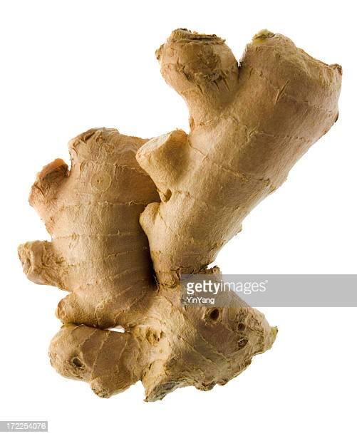 ginger origen natural, comida fresca spice condimento, aislado en blanco - ginger fotografías e imágenes de stock