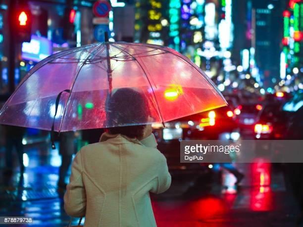 Ginza Night View in the Rain
