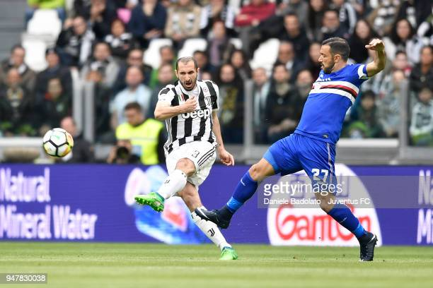 Giorgio Chiellini of Juventus and Fabio Quagliarella of Sampdoria in action during the serie A match between Juventus and UC Sampdoria at Allianz...