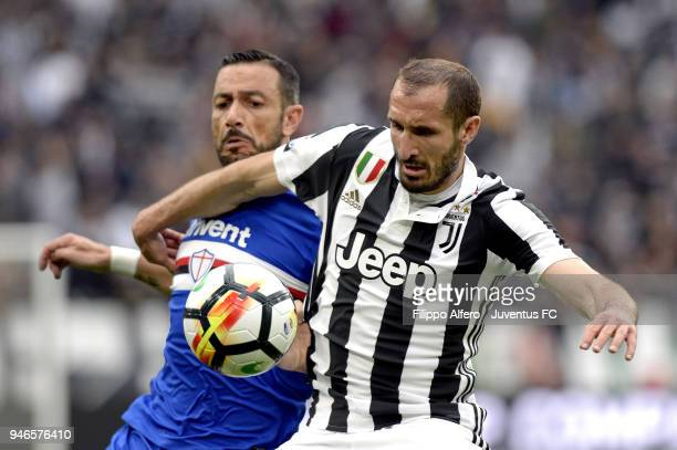 Giorgio Chiellini of Juventus competes for the ball with Fabio Quagliarella of UC Sampdoria during the serie A match between Juventus and UC...