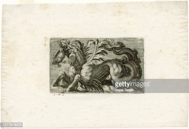 Giovanni Andrea Maglioli, Sea Monster with a Water Fowl in its Mouth, 1580-1610, engraving on paper, 7 1/16 in. X 10 3/8 in. , Maglioli's monsters...